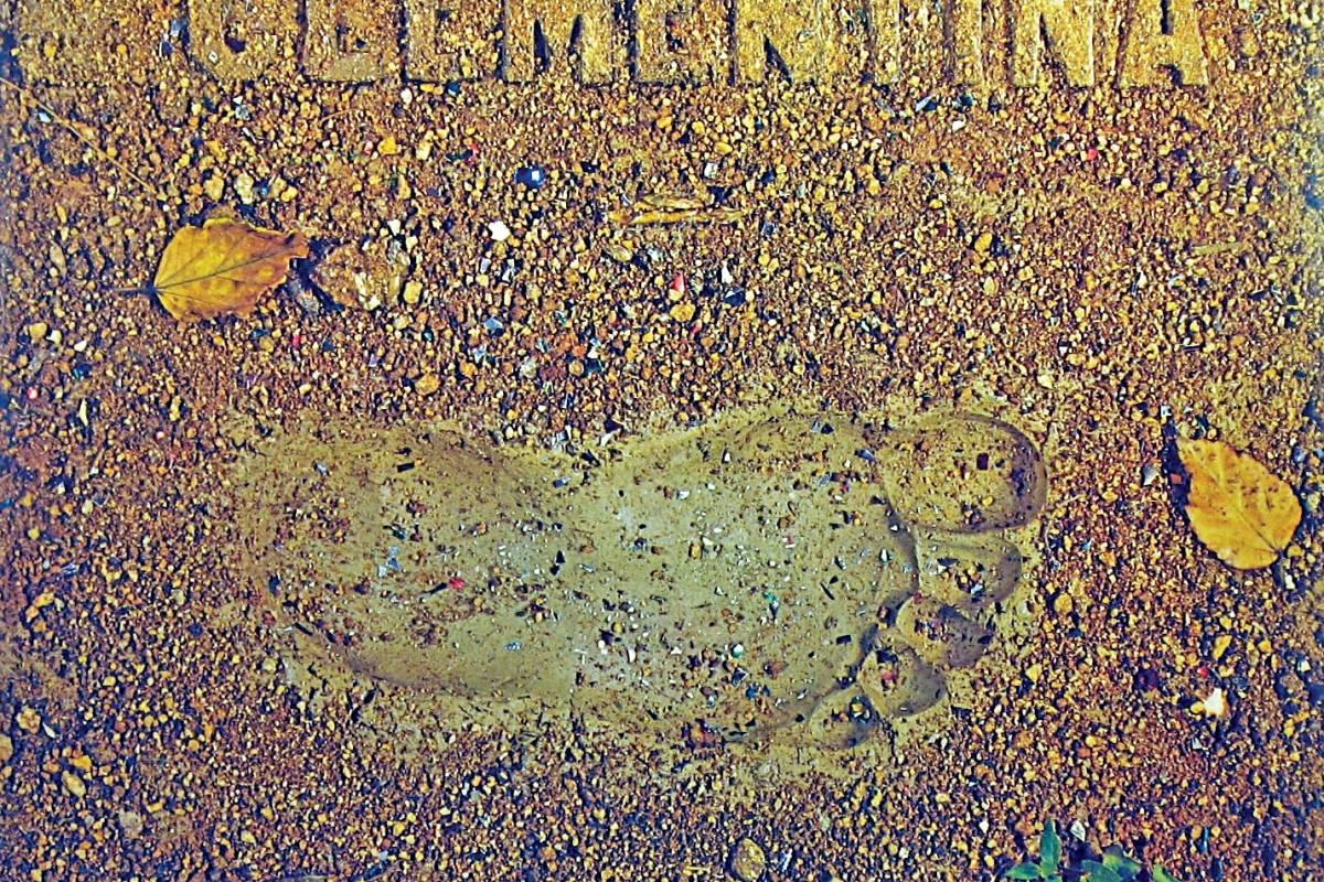 capa do álbum clementina e convidados