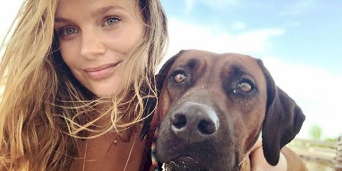 """Mayte Rodríguez se defendió tras polémica por viajar en avión con su perra: """"Está entrenada desde los 3 meses"""""""