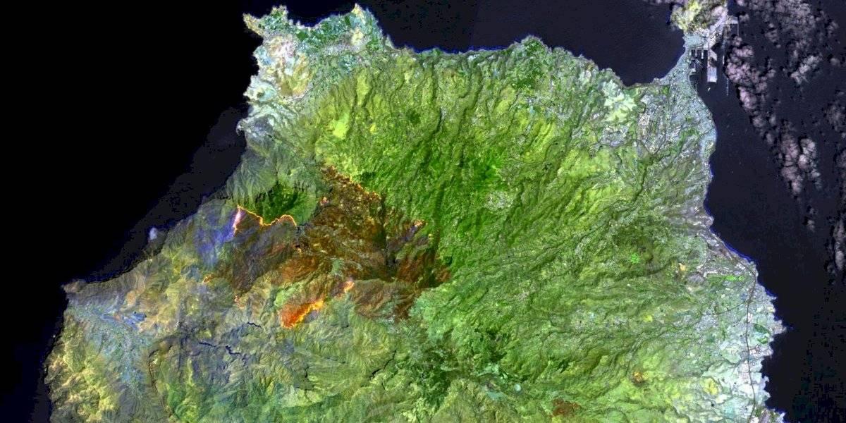 El fuego no solamente consume al Amazonas: la potente imagen del incendio que azota a las islas Canarias en España vista desde el espacio
