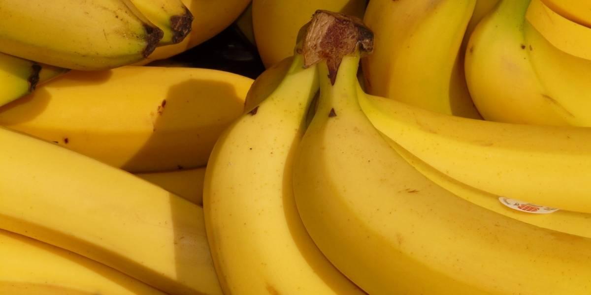 Un terrible hongo amenaza la existencia del banano que se cultiva en toda Latinoamérica