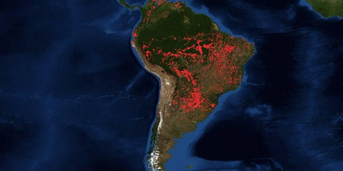 Impresionante imagen satelital tras devastadores incendios forestales que consumen el Amazonas