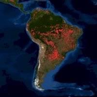 500 mil hectáreas en 16 días: la impresionante imagen satelital de los devastadores incendios forestales que consumen el Amazonas. Noticias en tiempo real