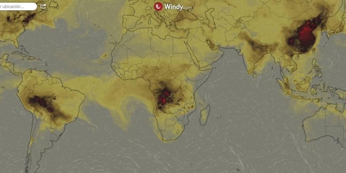 """""""Y Notre Dame les pareció devastador..."""": mapa muestra cómo el mundo se está quemando y dónde están los incendios forestales más complejos"""