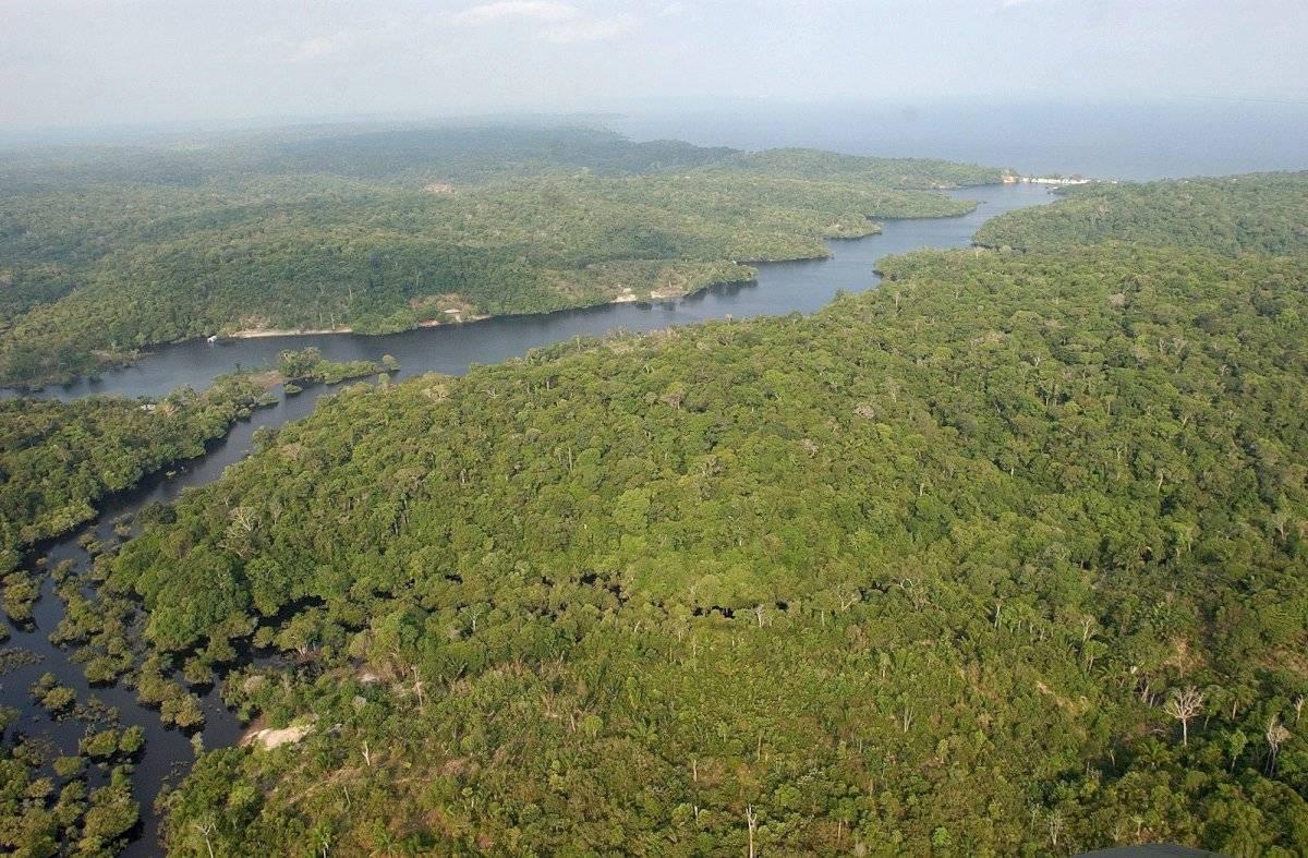 30.1 % de los focos de incendios (21 mil 942) se registró en el Cerrado, como es conocida la sabana brasileña y que cerca la Amazonía. El 10.9 % (siete mil 943) en el Bosque Atlántico, la región boscosa que bordea la mayor parte del litoral del país. Foto: AP