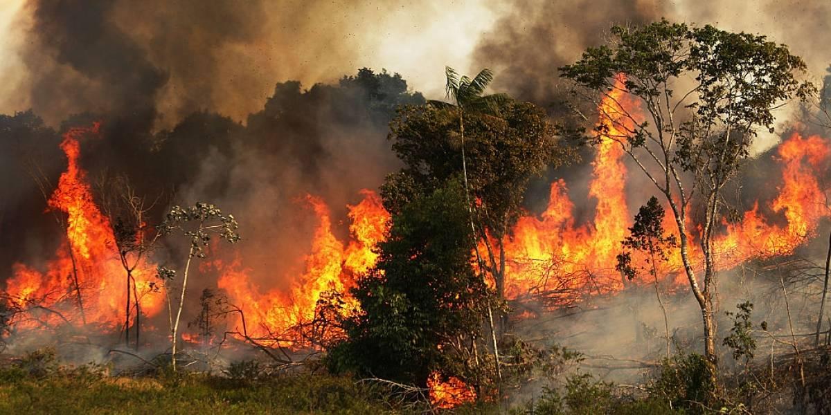 La NASA muestra devastadora imagen de cómo arde el Amazonas desde el espacio