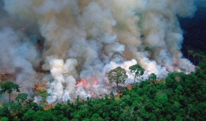 incendio del Amazonas