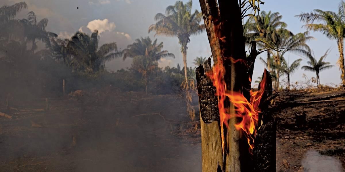 Na mira do governo, dinheiro europeu é usado no combate ao fogo na Amazônia