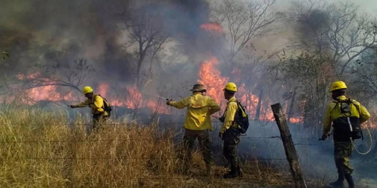 Incendio en la Amazonía: Bolivia alquilará avión cisterna para combatir las llamas