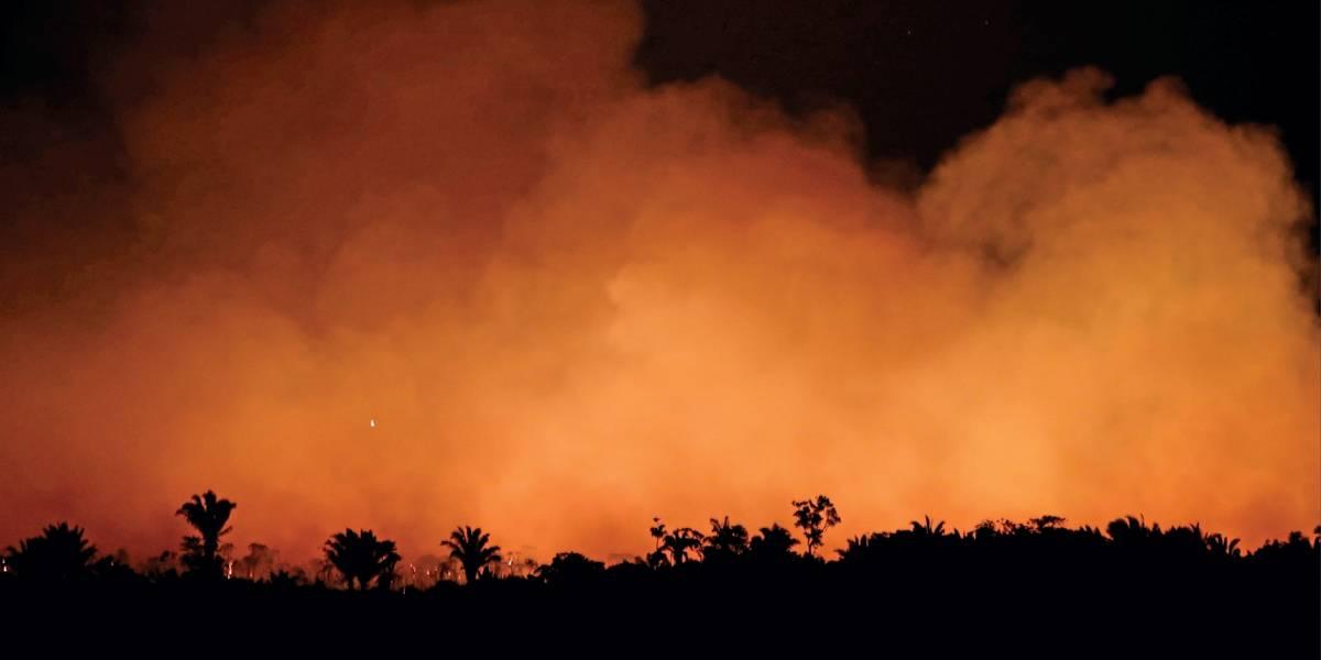11 mil cientistas alertam para 'sofrimento incalculável' que mudanças no clima provocarão
