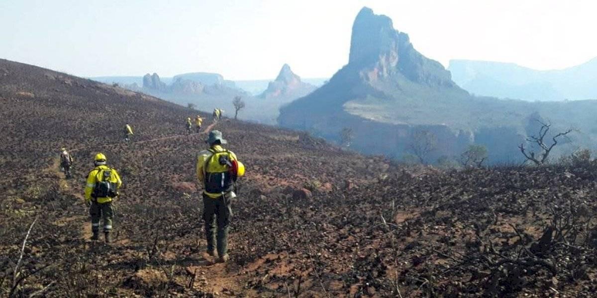 Desastre ambiental en Bolivia: incendios forestales destruyen más de 400 mil hectáreas y recurren al Supertanker para enfrentar la crisis