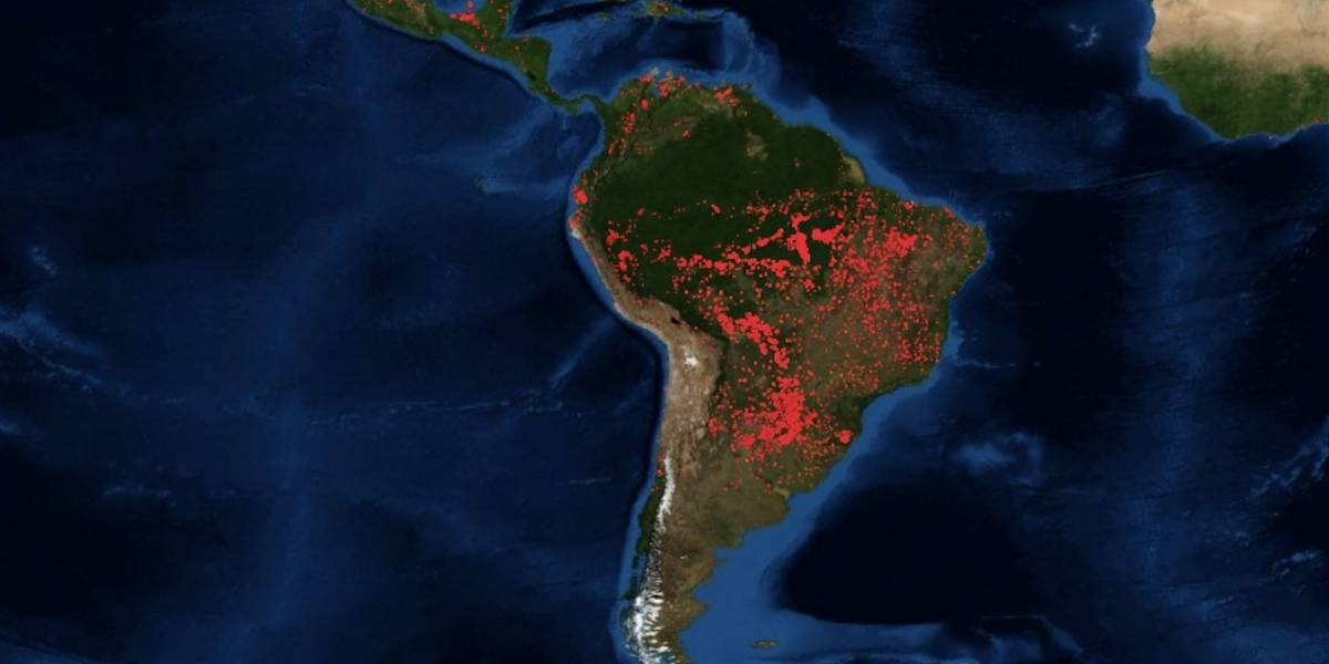 Selva del Amazonas es devastada por incendios