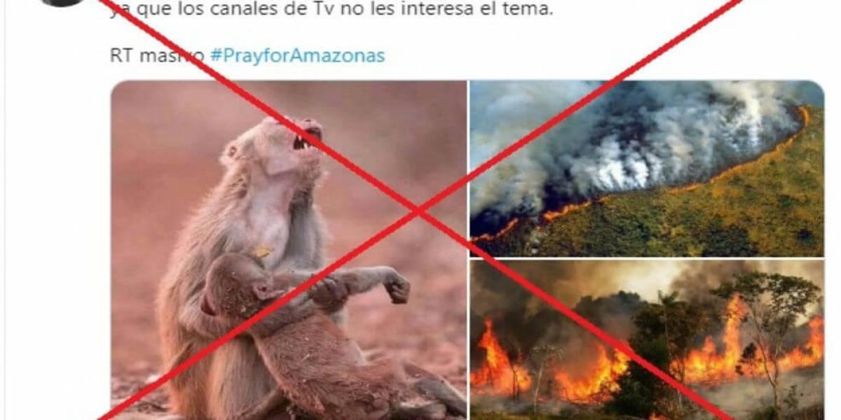 ¿De dónde son las imágenes falsas sobre incendio en la Amazonía?