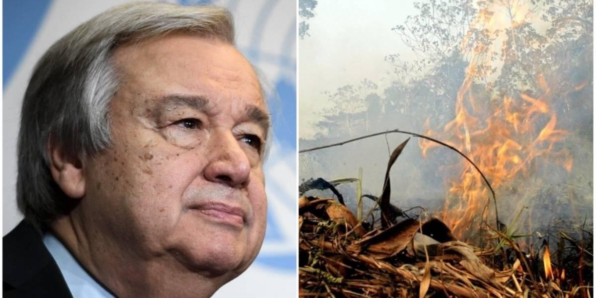 ONU urge a Brasil a proteger de los incendios a la Amazonía