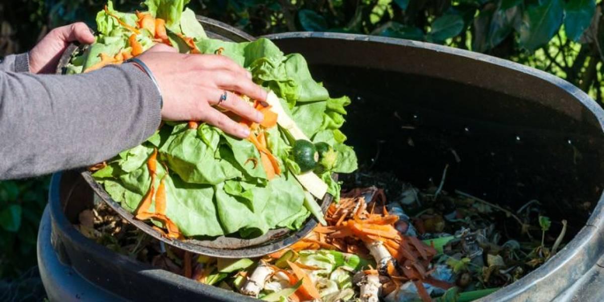 Desperdicio alimentario: botamos 3.700 millones de kilos de comida al año