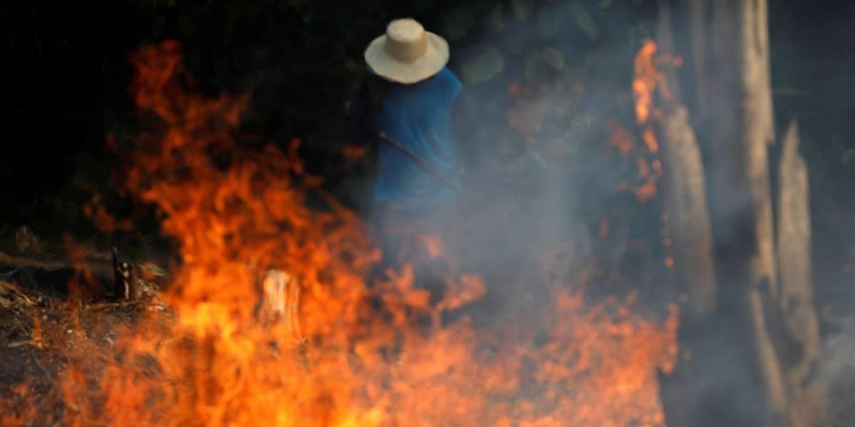 MPF acusa 2,2 mil suspeitos por desmatamento ilegal na Amazônia