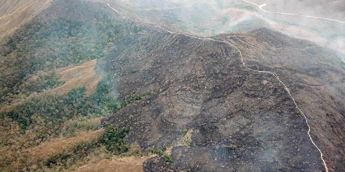 """Brasil: """"los incendios en el Amazonas no están fuera de control"""""""