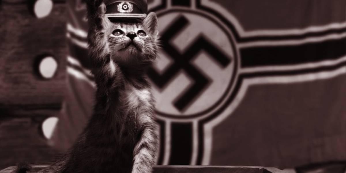 Conoce al Gato Nazi de la Segunda Guerra Mundial que no podía morir
