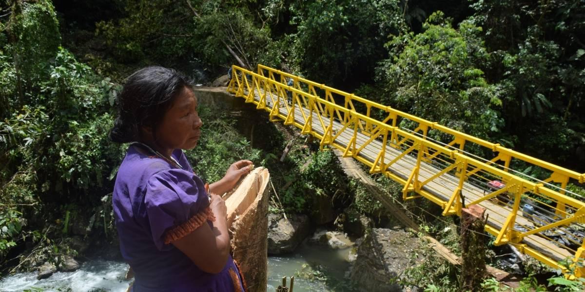 Alerta confinamiento en Antioquia de 4.000 indígenas por combates
