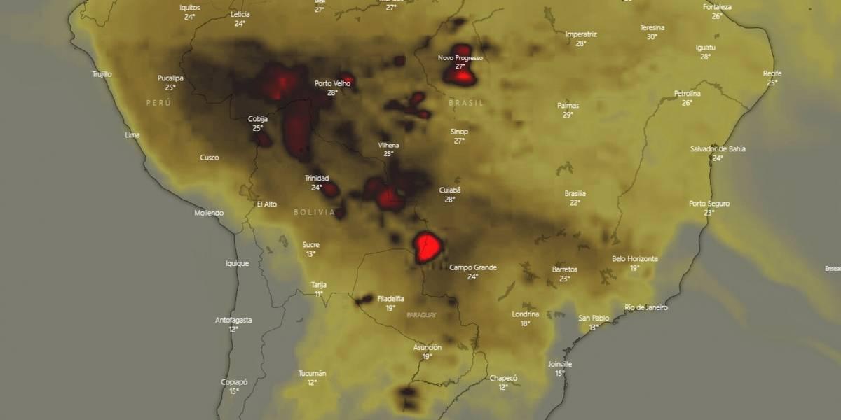 Plataforma transmite ao vivo avanço dos incêndios na Amazônia