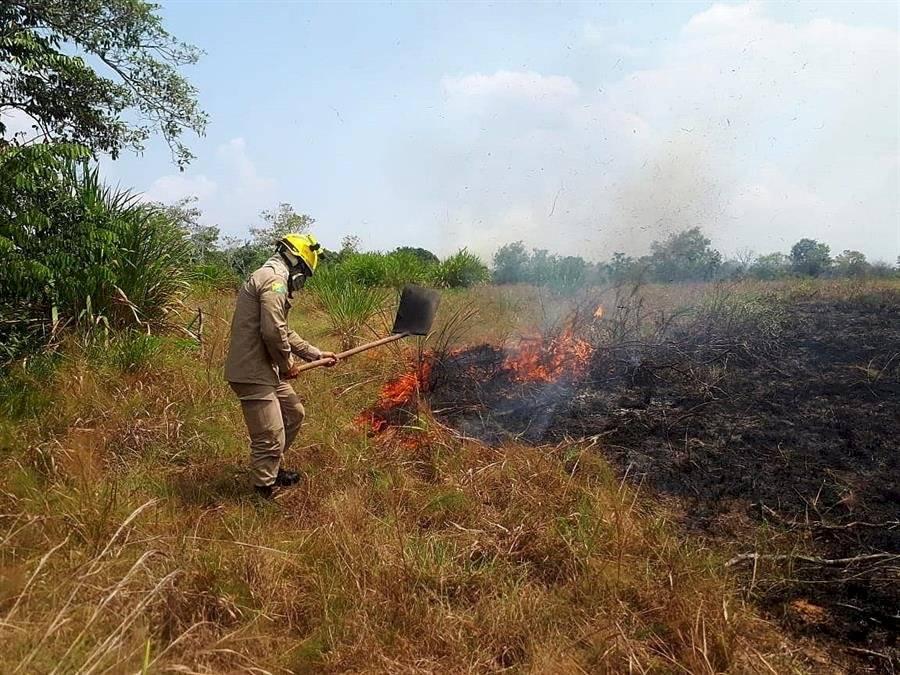 Incendio de la Amazonía EFE