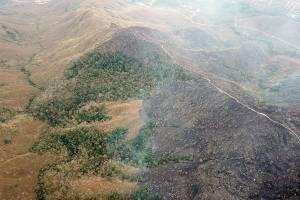 Incendio de la Amazonía