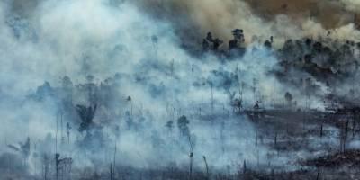 Incendio en Amazonia