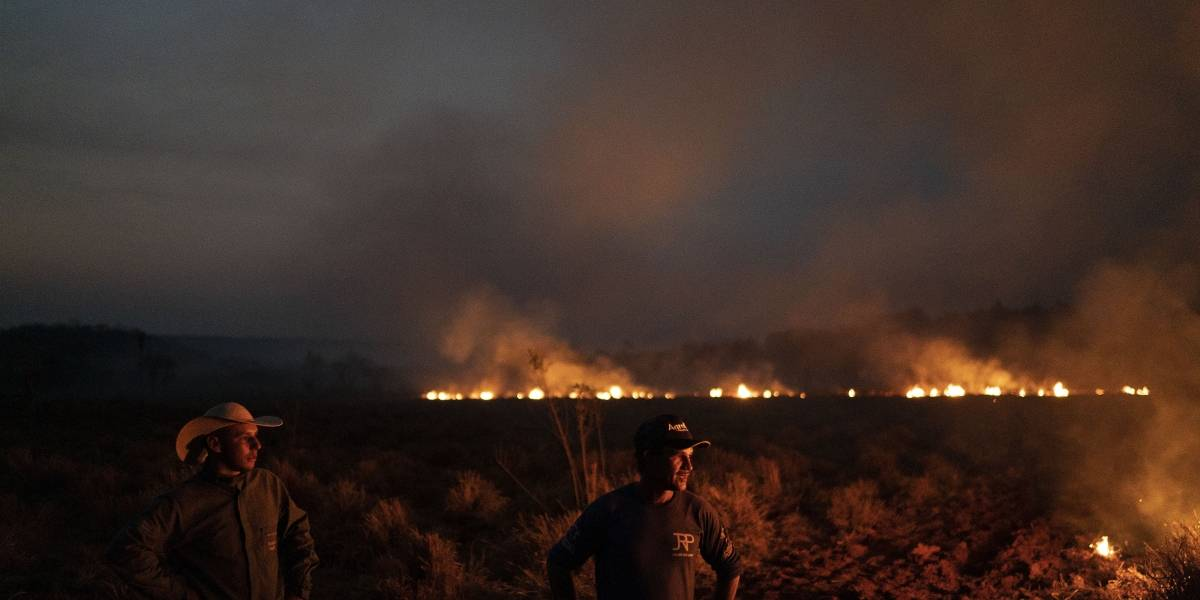 Mientras el humo se expande por la región: Ejército de Brasil inicia combate de incendios en Amazonas