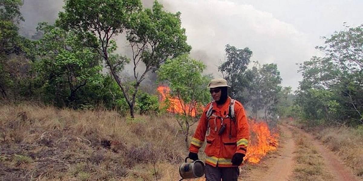 Brasil despliega a 44.000 militares para combatir incendios en la Amazonía