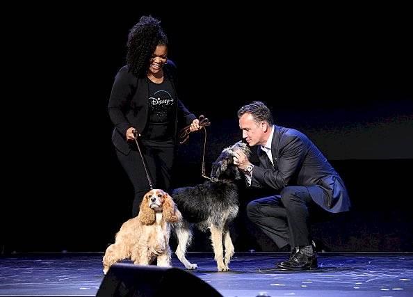 Perros de la película La Dama y el Vagabundo Getty Images