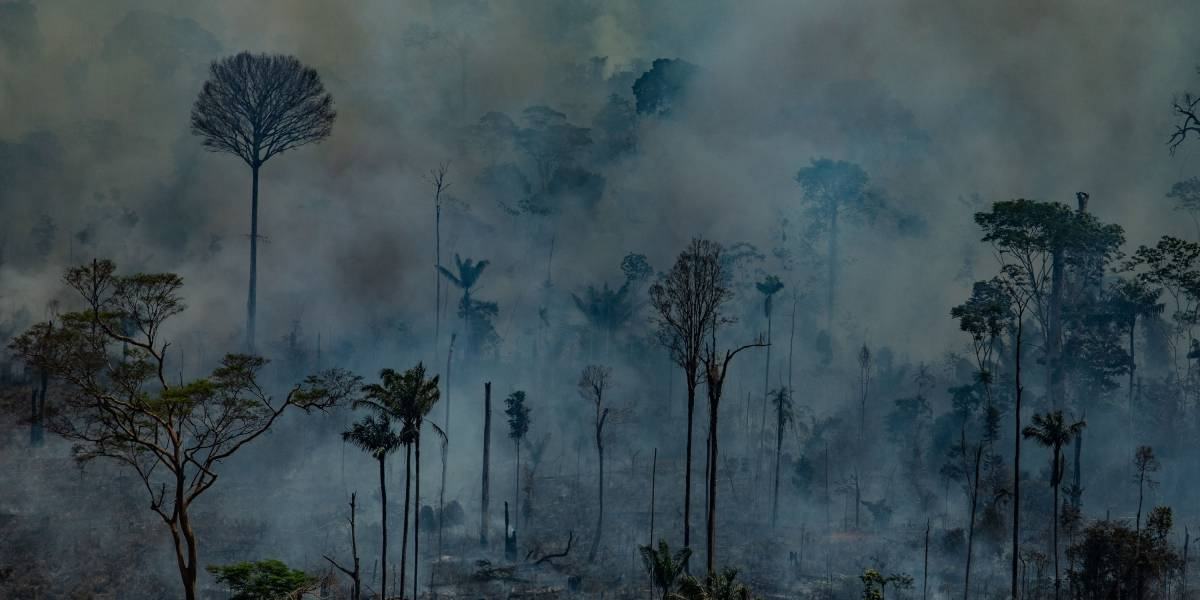 ¿Cuándo llegará la nube negra a Buenos Aires? El humo de los incendios en el Amazonas avanza por el continente