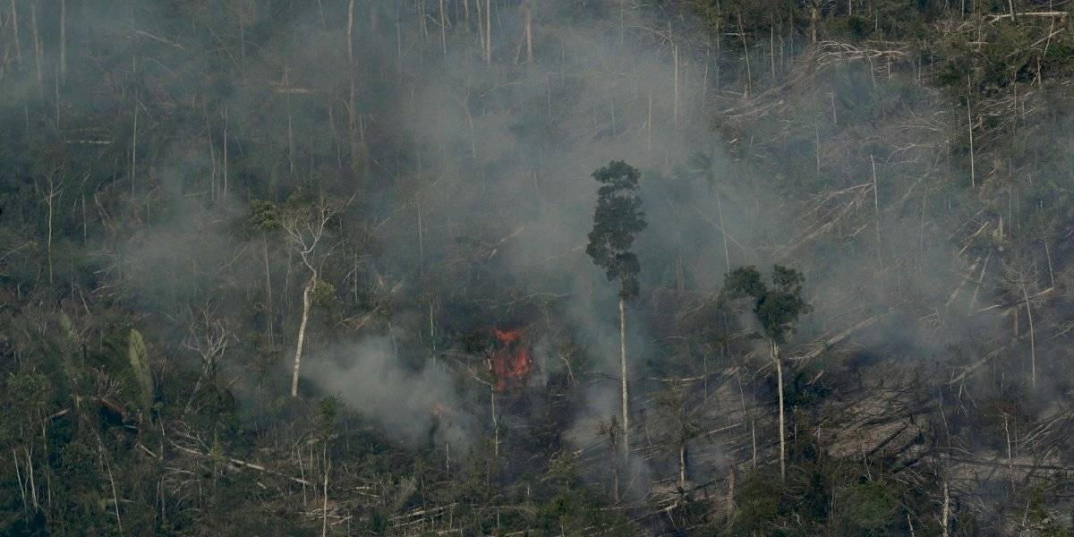 Fundación de DiCaprio pide donativos para Amazonía