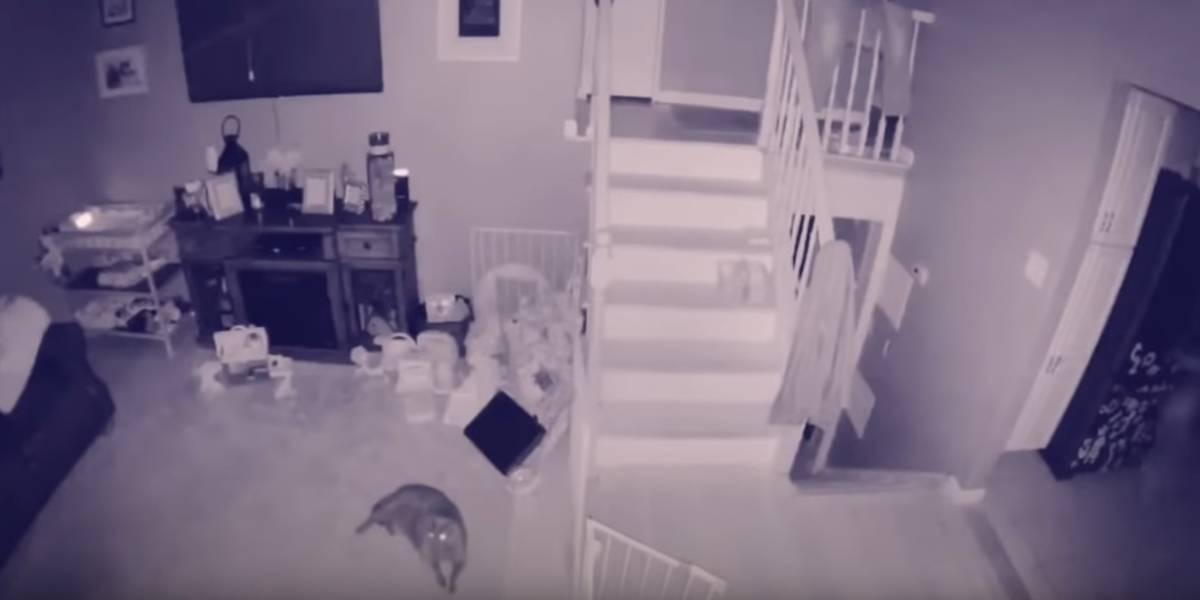 VIDEO. Cámara captaespeluznantemanifestaciónfantasmalen unacasa