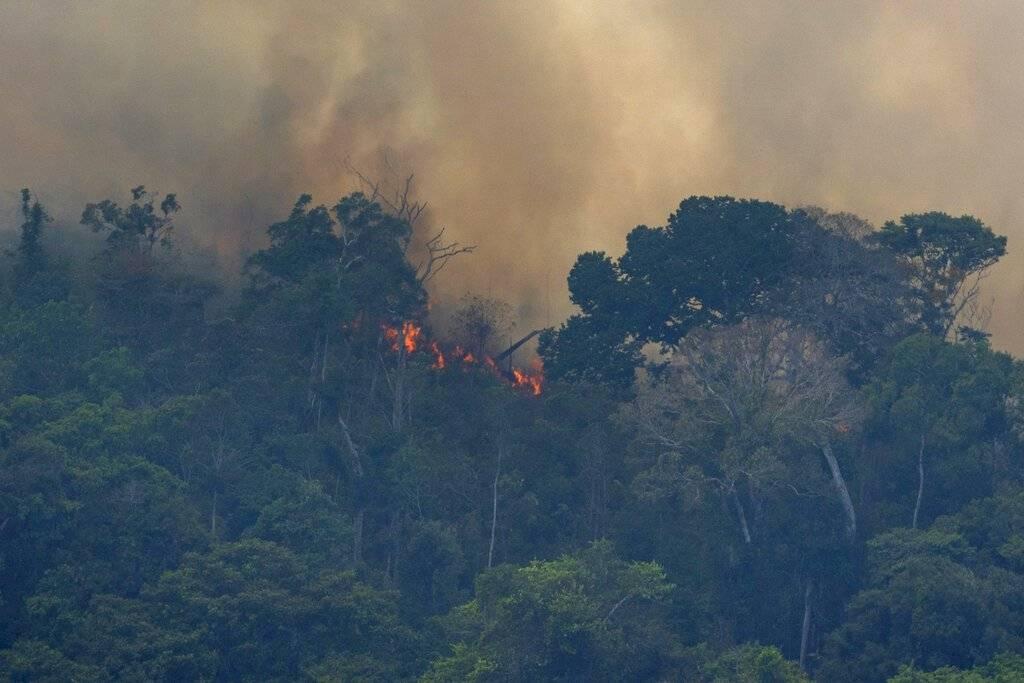 Expertos brasileños han reportado un número récord de cerca de 77 mil incendios forestales en todo el país. Foto: AP