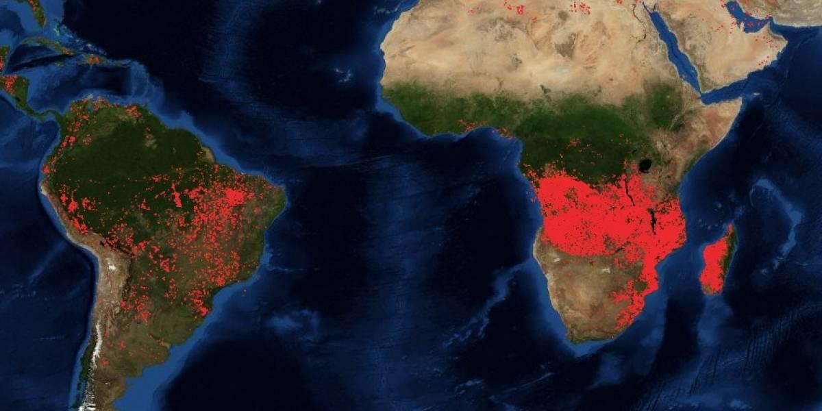 Arde el segundo pulmón verde del mundo: la impactante imagen satelital que muestra los incendios en África