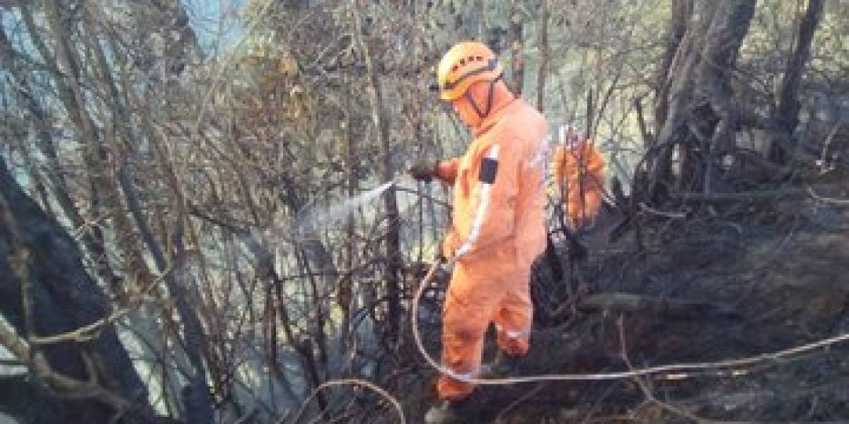 En Colombia han extinguido el 98 % de incendios forestales de temporada seca