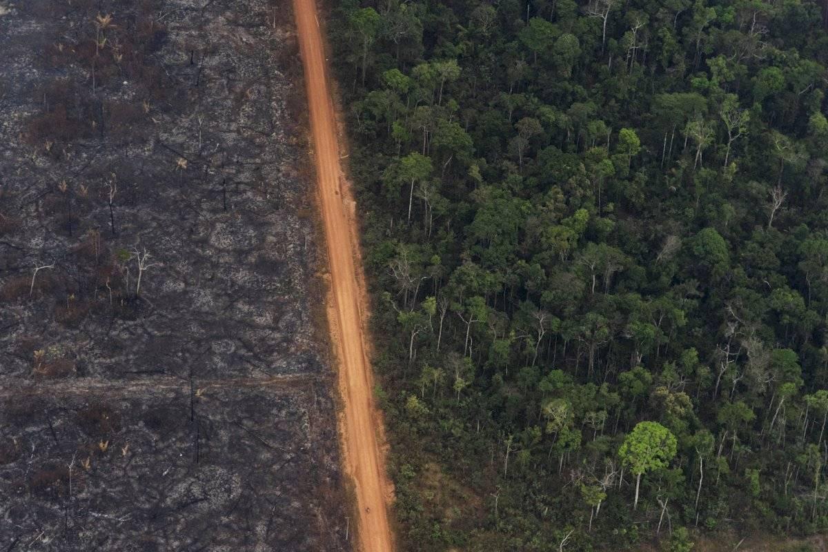 Tomas aéreas de la deforestación e incendios en el Amazonas Foto: AP