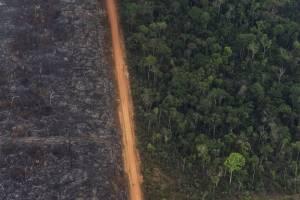 Tomas aéreas de la deforestación e incendios en el Amazonas