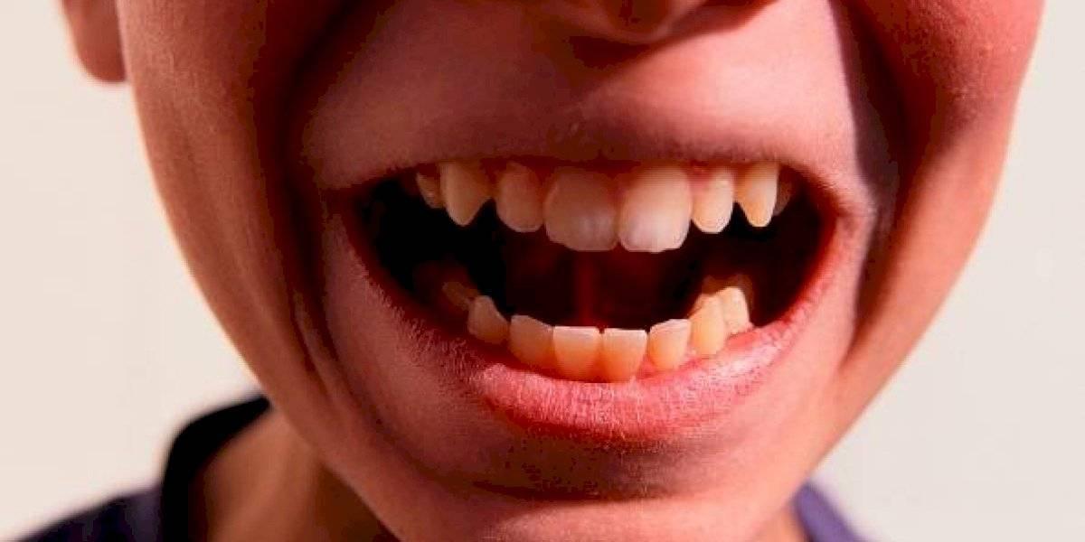 Consejos dentales para el regreso a clases