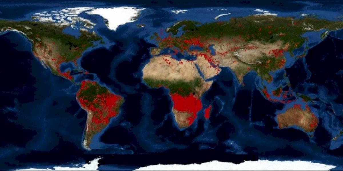 Imagen del día: Incendios en África y la Amazonía no son comparables