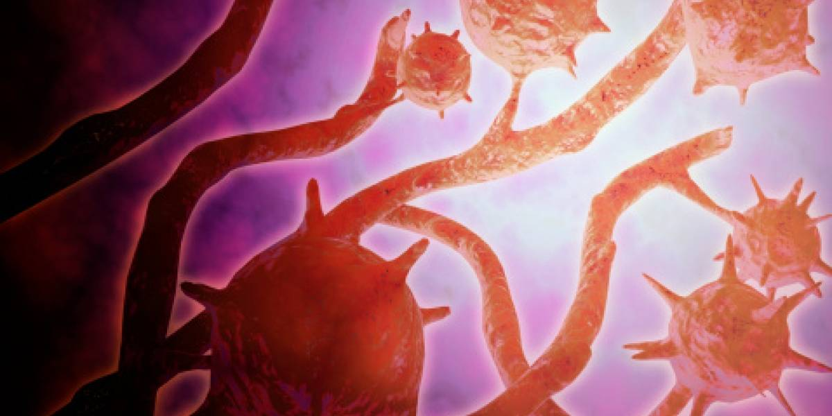 Histoplasma capsulatum: detectan en Chile 22 casos de infección pulmonar por extraño hongo tropical