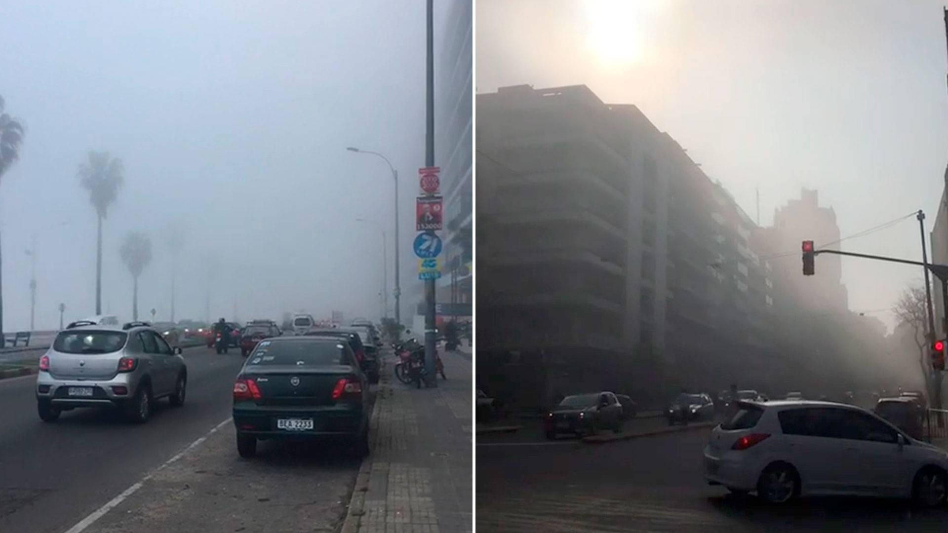 Amazonas: El humo de los incendios llegó hasta el Río de la Plata