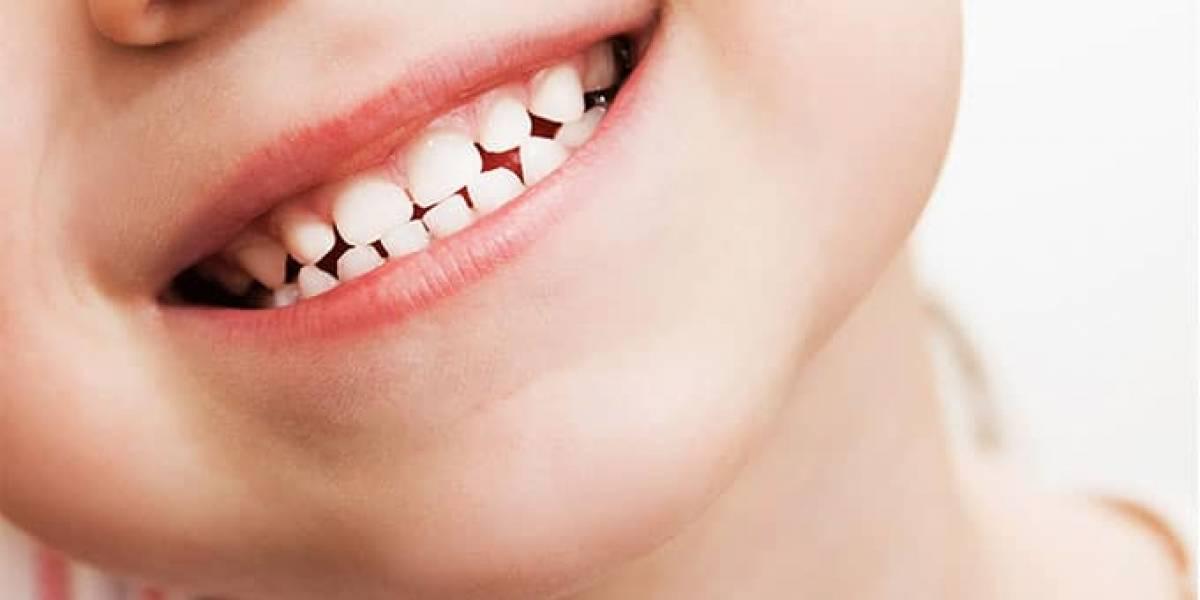 Los dientes de leche pueden salvarte la vida, ¿los guardaste?