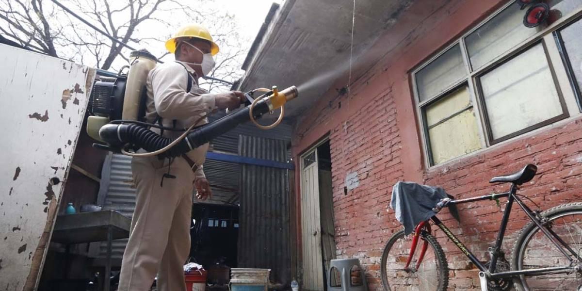 Dengue se extiende a más zonas de la ciudad de Guadalajara
