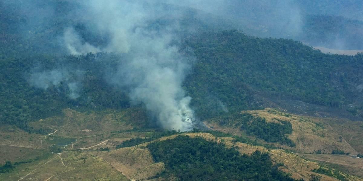 Siguen registrándose incendios en la Amazonía y el Cerrado
