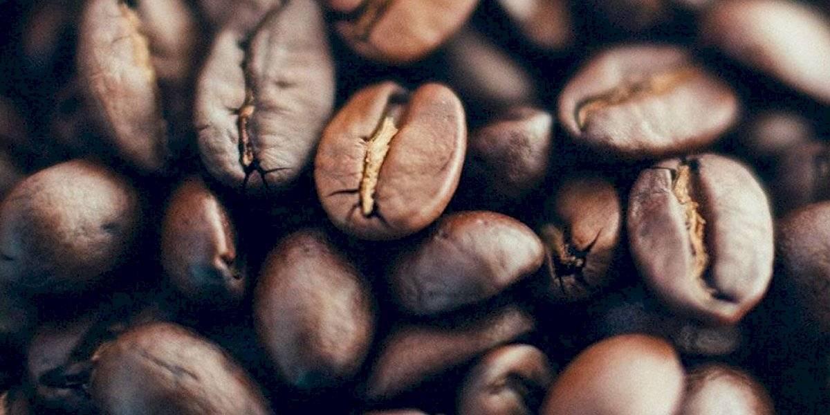 Crean espacio para redescubrir la esencia del café