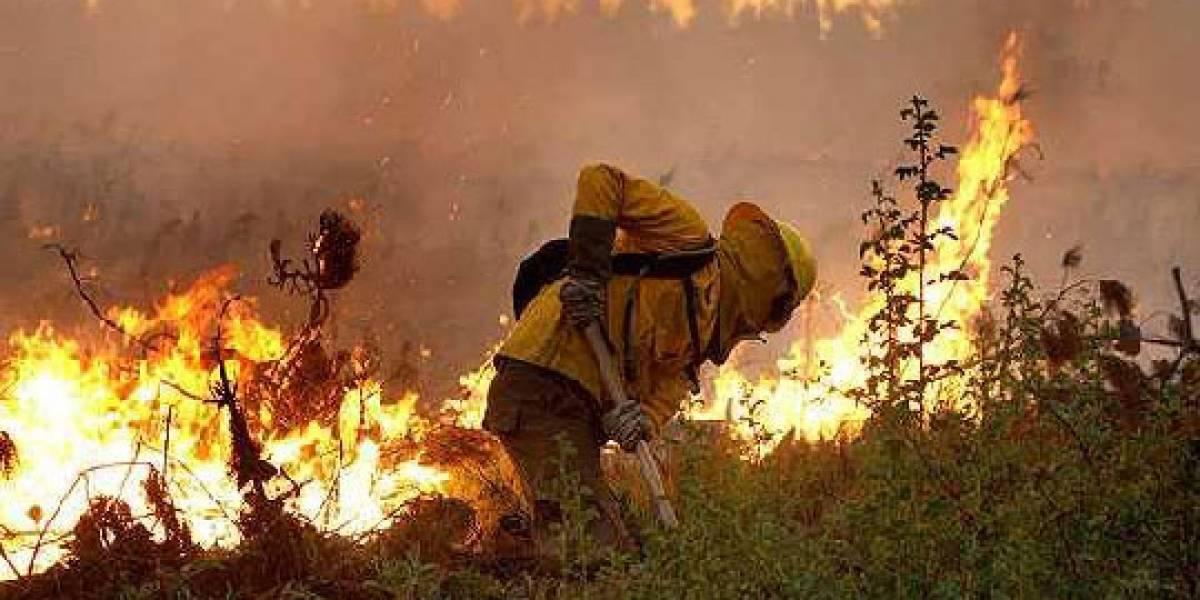 Incendios de verano: Altas temperaturas, bajas precipitaciones y acumulación de pasto seco podrían generar nuevas emergencias