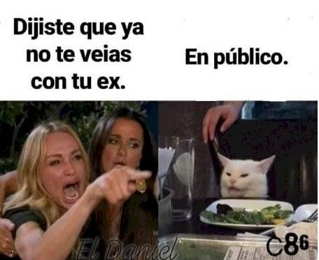 Meme de la mujer que le grita a un gato