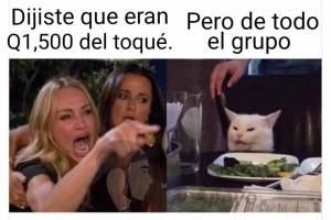 Meme del gato