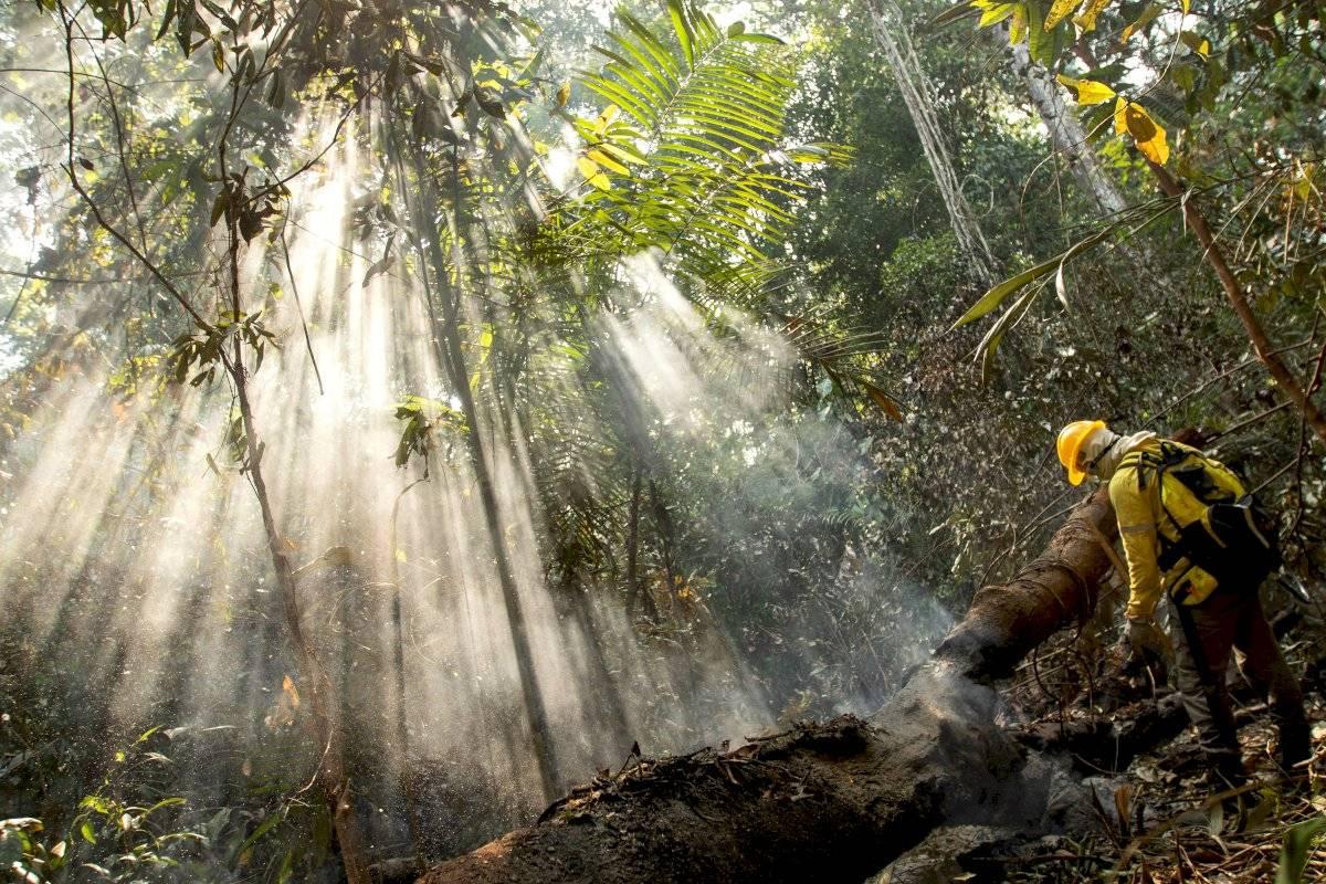 Policía identifica tres sospechosos de causar incendios en la Amazonía EFE