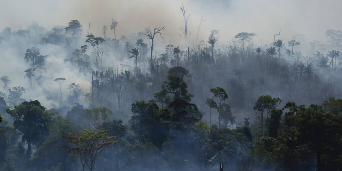 Reportan fuegos cerca de localidad en Amazonía de Brasil